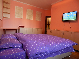Room in the apart - hotel in the center of Chisinau, Monolocale, 003