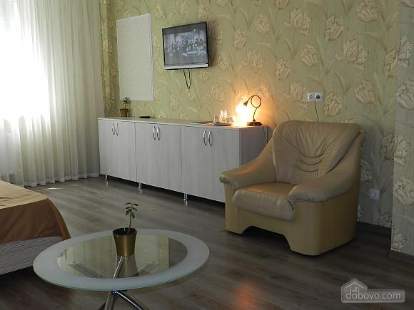 Apartment in the city center, Studio (73655), 003