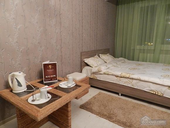 Апартаменты в центре, 1-комнатная (25221), 001