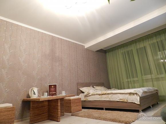 Апартаменты в центре, 1-комнатная (25221), 006
