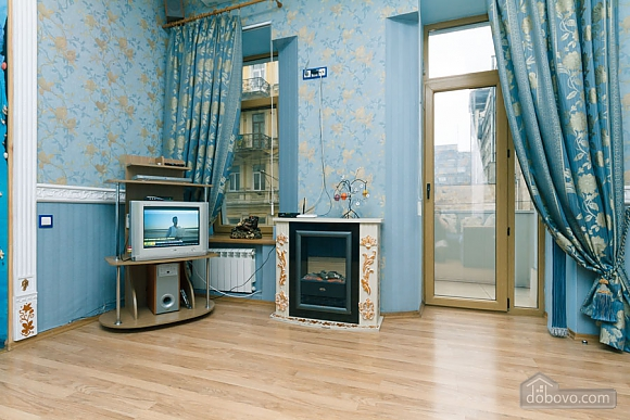 Apartment in the center of Kyiv, One Bedroom (78993), 009