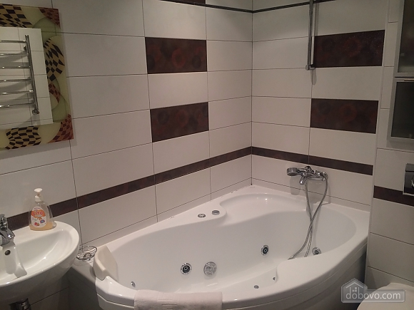 Luxury apartment with jacuzzi near to Lybedska station, Monolocale (88453), 005