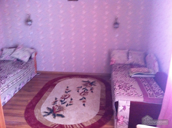 Apartment in the center of Truskavets, One Bedroom (78755), 003