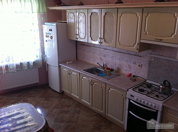 Apartment in the center of Truskavets, One Bedroom (78755), 005
