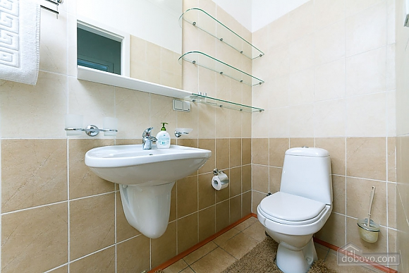 Apartment in the center of Kyiv, Three Bedroom (55621), 014