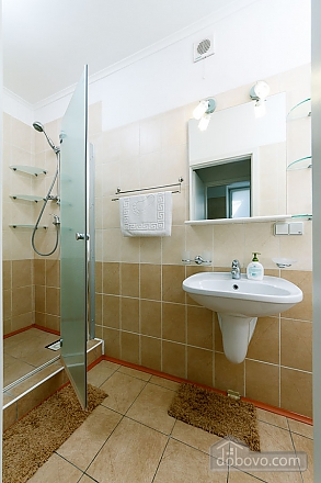 Apartment in the center of Kyiv, Three Bedroom (55621), 016