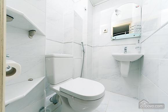 Апартаменты в самом центре Киева, 2х-комнатная (72640), 013