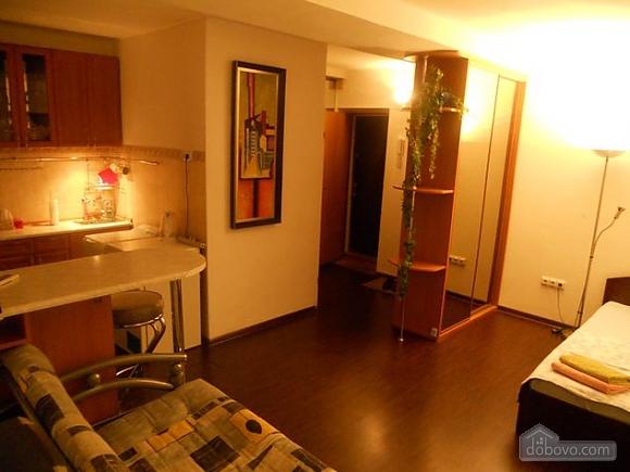 Apartment near Vokzalna metro station, Studio (94302), 006