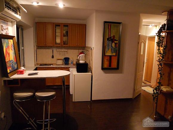 Apartment near Vokzalna metro station, Studio (94302), 007