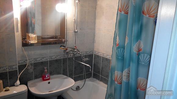 Apartment near Vokzalna metro station, Studio (94302), 008