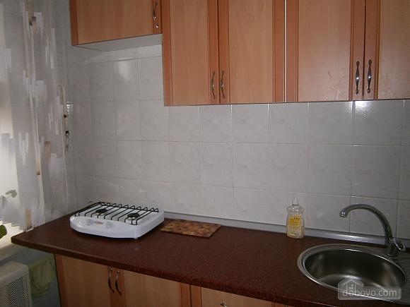 Cosy apartment next to Obolon metro, Monolocale (72444), 004