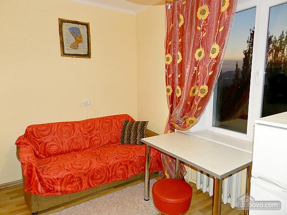 Очаровательная квартира, 1-комнатная (43832), 004