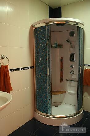 VIP квартира с Wi-Fi, 2х-комнатная (66784), 004