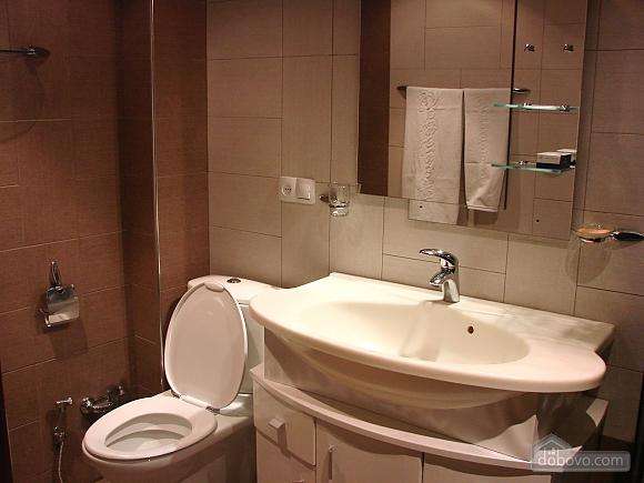Luxury apartment, Deux chambres (66794), 014