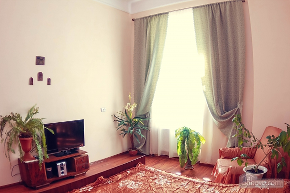 Apartment in the heart of the city, Studio (78211), 004