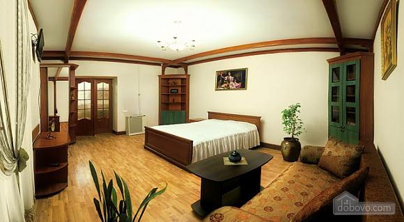 Квартира в центрі міста, 1-кімнатна (57991), 001