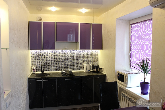 New elite apartment in the center of the city, Un chambre (63063), 005