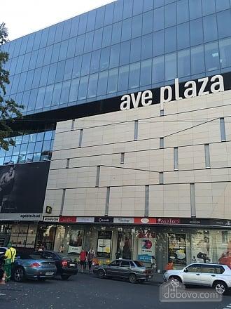 New elite apartment in the center of the city, Un chambre (63063), 019
