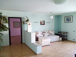 Spacious apartment near the center, Zweizimmerwohnung, 002