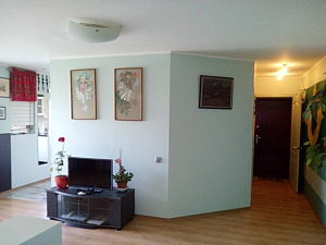 Spacious apartment near the center, Zweizimmerwohnung, 003