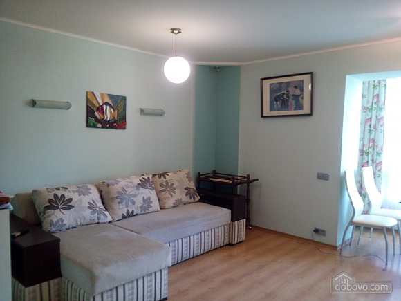 Spacious apartment near the center, One Bedroom (20593), 006