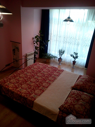 Spacious apartment near the center, One Bedroom (20593), 013