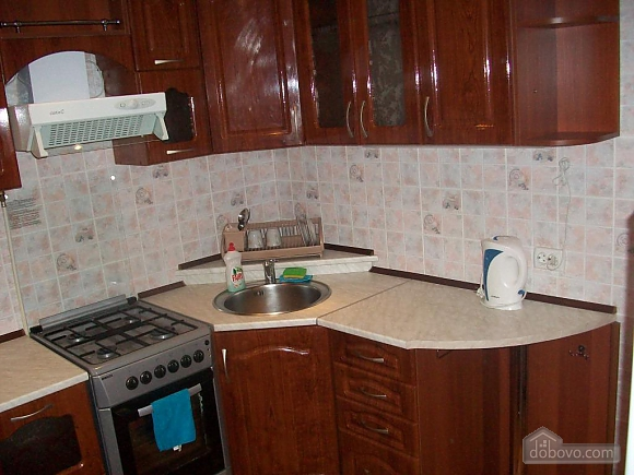 Apartment with renovation in the center, Monolocale (93775), 010
