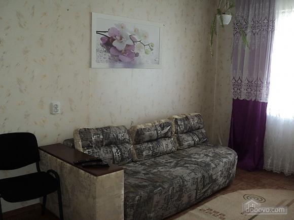 Квартира рядом с центральным рынком, 2х-комнатная (15796), 005