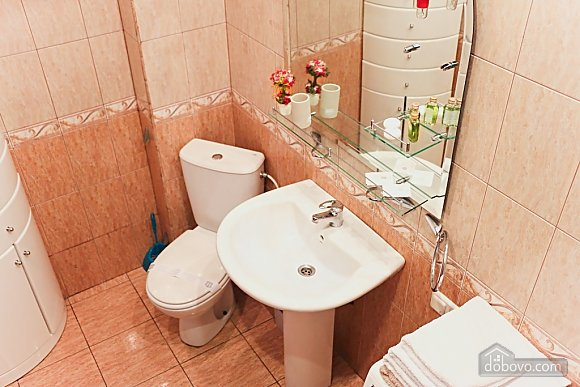 Apartment in the center of Kiev, One Bedroom (41522), 007