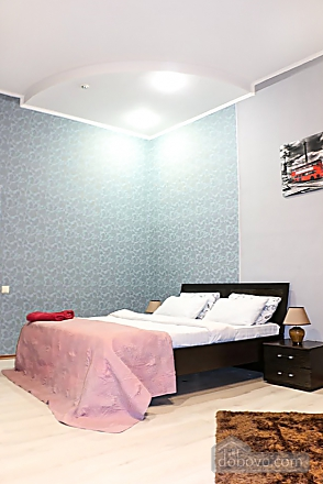 Apartment in the center of Kiev, One Bedroom (41522), 003