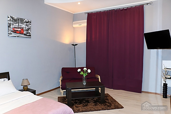 Apartment in the center of Kiev, One Bedroom (41522), 002