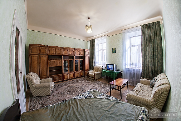 Apartment in the historical building, One Bedroom (87733), 006