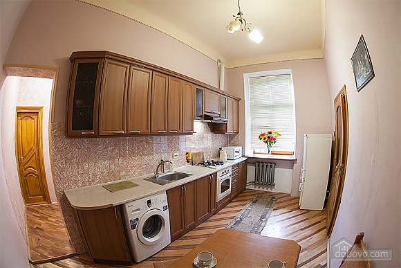 Apartment in the historical building, One Bedroom (87733), 011