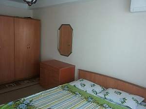 Budget apartment near the Olympiiskyi stadium, One Bedroom, 003