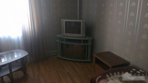 Затишна квартира в центрі, 1-кімнатна (14870), 005