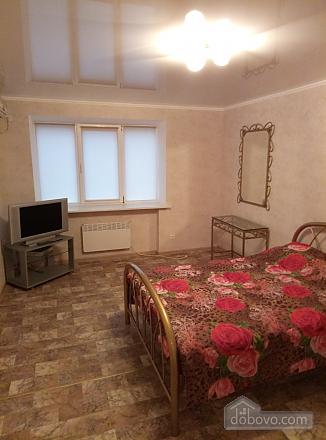 Квартира в самом центре города, 1-комнатная (57224), 001