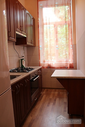 Bright and spacious apartment, Monolocale (75985), 005