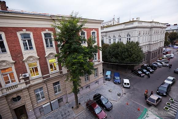 Просторная и современная квартира, 2х-комнатная (72051), 012