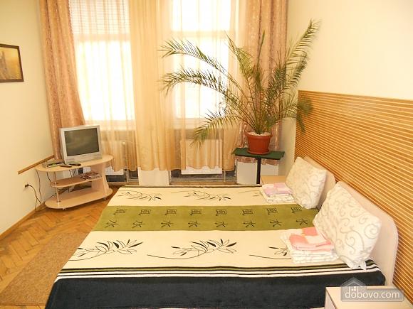 Затишна квартира в центральній частині міста, 1-кімнатна (23887), 002