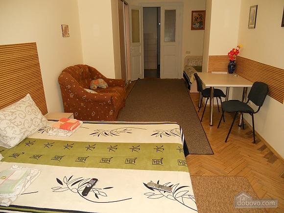Затишна квартира в центральній частині міста, 1-кімнатна (23887), 003