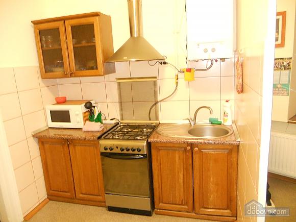 Затишна квартира в центральній частині міста, 1-кімнатна (23887), 007