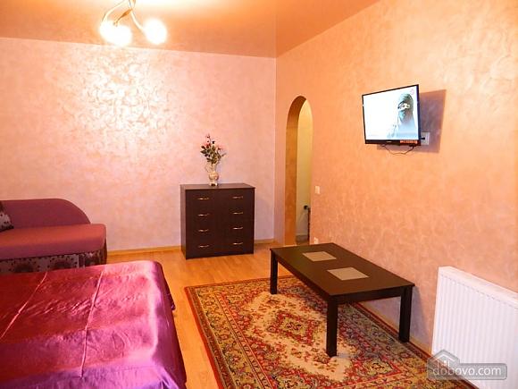 VIP apartment in the center, Monolocale (75249), 005
