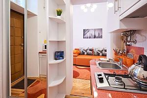 Красива квартира недалеко від центру, 1-кімнатна, 002
