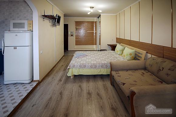 Компактна студія біля парку Шевченка, 1-кімнатна (98385), 001