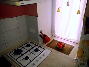 Чистая квартира возле метро Дружбы Народов, 1-комнатная, 008