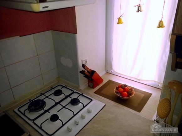 Clean apartment near to Druzhby Narodiv station, Monolocale (37119), 008