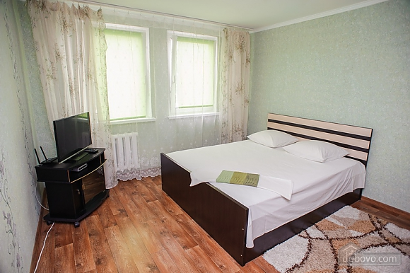 Apartment next to the Dnieper river and beach, Monolocale (61498), 001