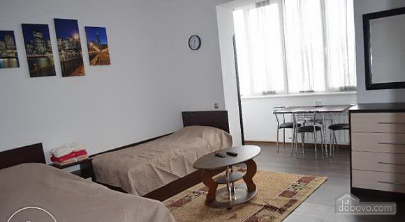 Very bright apartment in the center, Monolocale (33981), 002