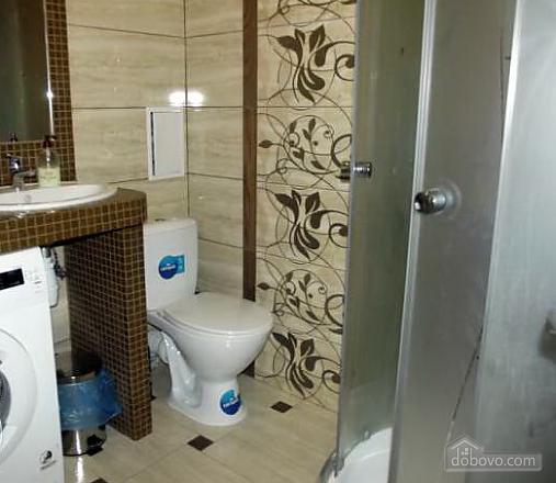 VIP apartment in the city center, Monolocale (43761), 007