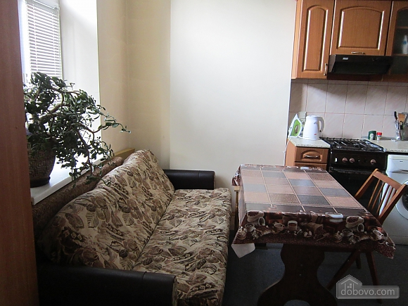 Apartment near Opera theatre, Studio (88168), 003